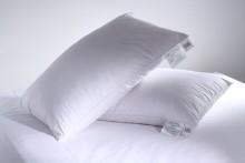 Greens Goose Down Pillow