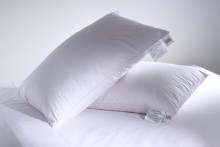 Greens Goose Feather & Down Pillow